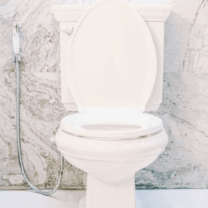 Two-Piece Dual Flush Toilet