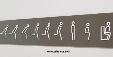 whistling toilet