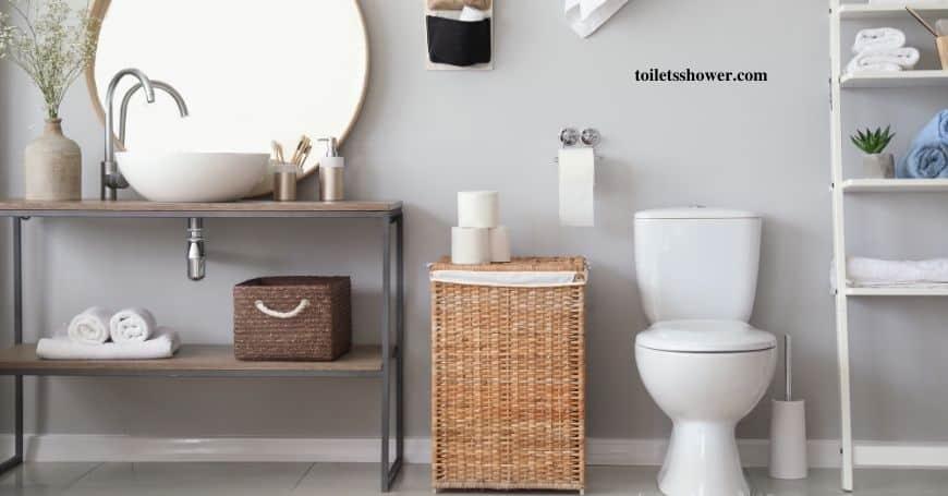 best toilet for seniors