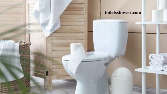 comfort height toilet