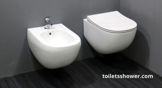 swiss madison wall mounted toilet