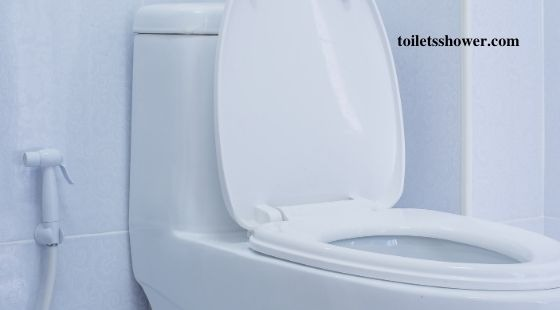 one piece toilet buying guides