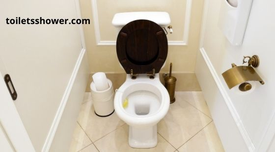 Buying A Silent Flush Toilet
