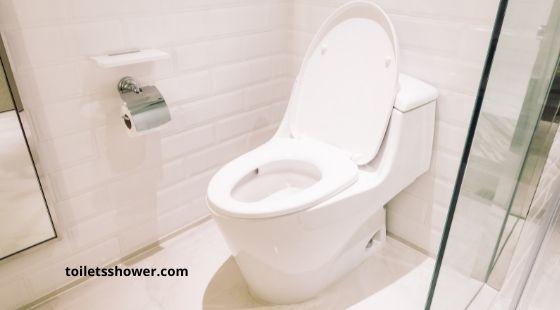 One piece dual flush toilet