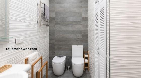 Two piece dual flush toilet