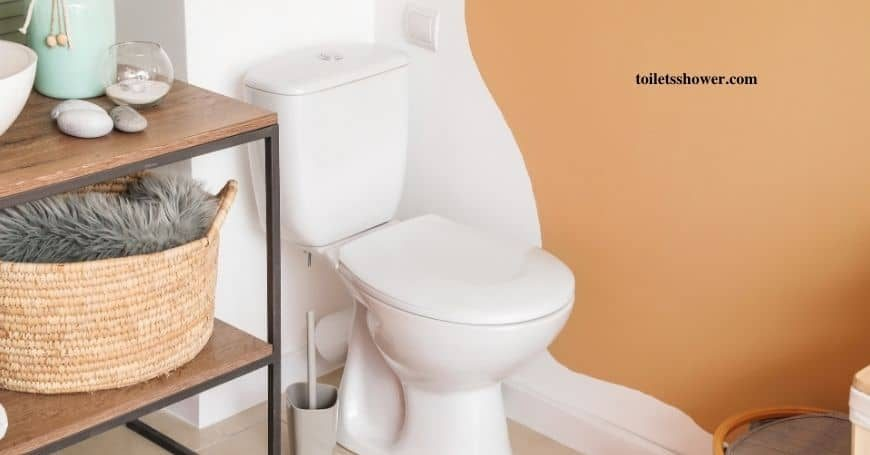 rear outlet toilet